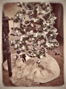 Ajax under Tree